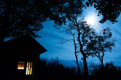 Cabin in the Woods lit with Moonlight royalty free stock image