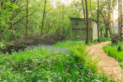 Cabin in woods. Log cabin and narrow pathway in the middle of woods stock image