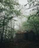 Cabin in the woods Stock Photography