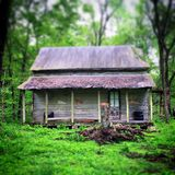 Cabin in the woods 2. Old log cabin in the woods royalty free stock photos