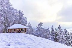 Cabin in the Woods Stock Images