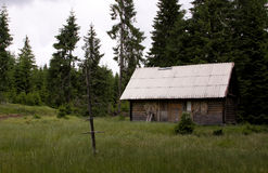 Cabin in the woods. Of Transylvania stock photos