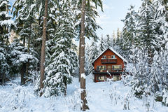 Cabin in Woods Winter with Snow Stock Image