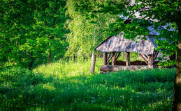 Cabin in the woods. Wooden cabin in the woods. Landscape photography stock photography