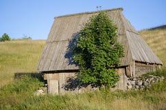 Cabina con el tejado del árbol Fotos de archivo libres de regalías