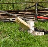 Cabina de la madera del fuego del abedul. Imágenes de archivo libres de regalías