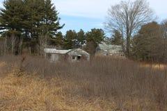 Cabina de madera vieja abandonada del cortijo demasiado grande para su edad con los árboles y las vides Fotos de archivo