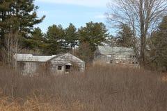 Cabina de madera vieja abandonada del cortijo demasiado grande para su edad con los árboles y las vides Imagenes de archivo