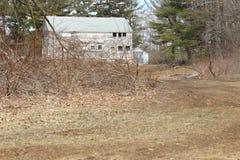 Cabina de madera vieja abandonada del cortijo demasiado grande para su edad con los árboles y las vides Foto de archivo