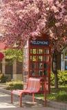 Cabina de teléfono floreciente Fotografía de archivo