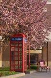 Cabina de teléfono floreciente Imagenes de archivo