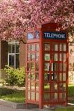 Cabina de teléfono floreciente Foto de archivo