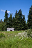 Cabina del borde del bosque Fotografía de archivo libre de regalías