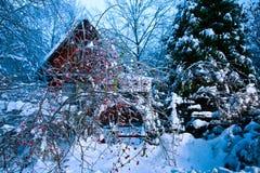 Cabina del invierno en hielo de la escena Imagen de archivo