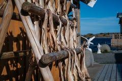 Cabina del pescador de la isla de Noruega Lofoten imagen de archivo libre de regalías