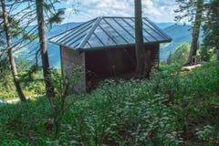 Cabina di legno con un tetto del metallo in mezzo alla foresta della Bulgaria immagine stock libera da diritti
