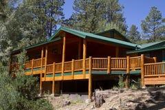Cabina di vacanza di estate nel legno della montagna Immagini Stock Libere da Diritti