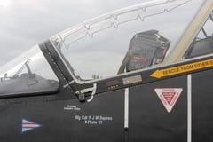Cabina do piloto do falcão Imagem de Stock Royalty Free