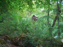 Cabina en el bosque fotografía de archivo
