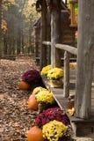 Cabina en las maderas 2 foto de archivo