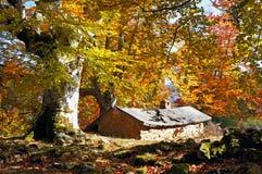 Cabina en otoño Foto de archivo libre de regalías