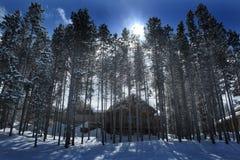 Cabina nel tempo di Forest Woods Pine Trees Winter coperto in neve Fotografie Stock Libere da Diritti
