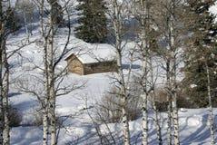Cabina occidental vieja en nieve con los álamos tembloses Imágenes de archivo libres de regalías