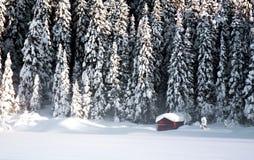 Cabina rossa di inverno Fotografia Stock Libera da Diritti