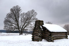 Cabina y árbol viejo en el parque nacional de la fragua del valle Imagen de archivo libre de regalías