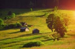 Cabinas rústicas en el valle Verano Fotografía de archivo libre de regalías