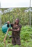 CABINDA/ANGOLA - 9 giugno 2010 - agricoltore rurale africano alla piantagione d'innaffiatura Fotografia Stock