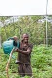 CABINDA/ANGOLA - 9 giugno 2010 - agricoltore rurale africano alla piantagione d'innaffiatura Fotografia Stock Libera da Diritti