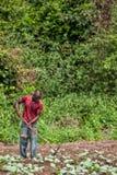 CABINDA/ANGOLA - 9 giugno 2010 - agricoltore rurale fino a terra in Cabinda L'Angola, Africa Fotografie Stock