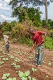 CABINDA/ANGOLA - 9 juin 2010 - agriculteurs ruraux à jusqu'à la terre dans Cabinda L'Angola, Afrique Photos stock