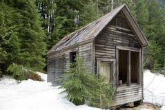 Cabine abandonnée de région sauvage Images libres de droits