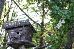 Cabine da casa do pássaro imagens de stock