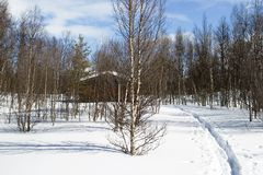 Cabine da floresta do inverno foto de stock