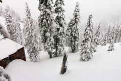 Cabine da montanha durante um blizzard do inverno fotos de stock royalty free