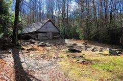 Cabine dans les bois Photo libre de droits