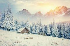 Cabine in de bergen in de winter Geheimzinnige mist Stock Fotografie