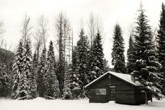 Cabine de l'hiver photo libre de droits