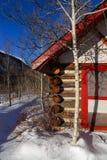 Cabine de l'hiver Photographie stock libre de droits