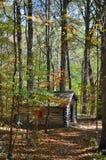 Cabine de logarithme naturel dans la forêt Photo stock