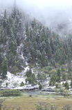 Cabine de logarithme naturel dans la neige Photographie stock