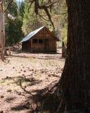 Cabine de logarithme naturel de montagne Photographie stock libre de droits