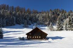 Cabine de logarithme naturel en hiver images libres de droits