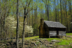 Cabine de logarithme naturel en stationnement national de montagne de Smokey photos stock