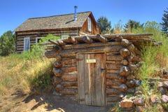 Cabine de logarithme naturel et cave de fond anciennes rustiques image stock