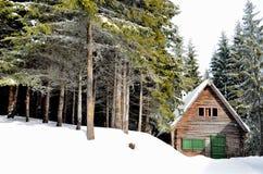A cabine de madeira Fotografia de Stock