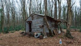 Cabine de madeira de Brown em uma floresta Foto de Stock